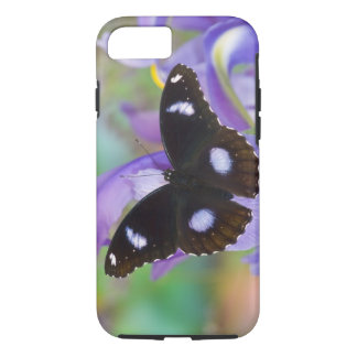 Sammamish Washington Tropical Butterflies iPhone 8/7 Case