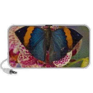Sammamish Washington Tropical Butterfly 11 Notebook Speaker