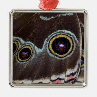 Sammamish Washington Tropical Butterfly 12 Christmas Ornament
