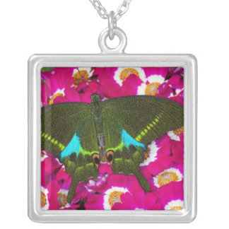 Sammamish, Washington Tropical Butterfly 16 Silver Plated Necklace