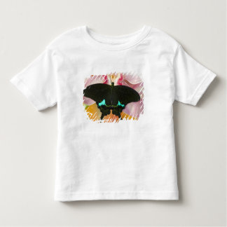 Sammamish, Washington Tropical Butterfly 17 Toddler T-Shirt