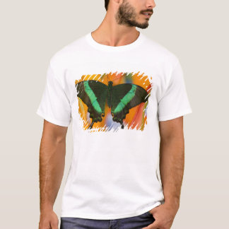 Sammamish, Washington Tropical Butterfly 19 T-Shirt