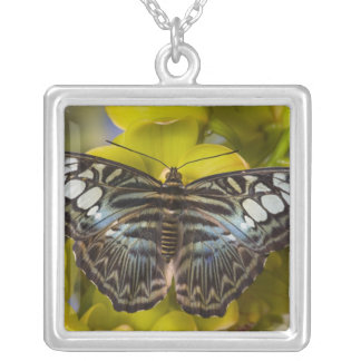 Sammamish, Washington Tropical Butterfly 23 Silver Plated Necklace