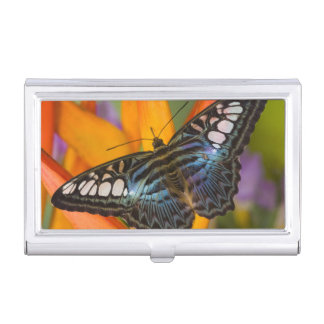 Sammamish, Washington Tropical Butterfly 24 Business Card Holder