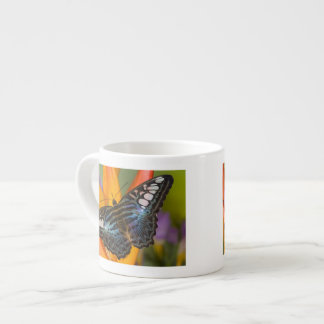Sammamish, Washington Tropical Butterfly 24 Espresso Cup