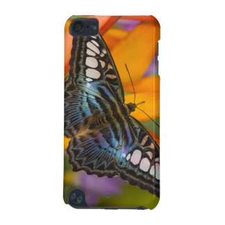 Sammamish, Washington Tropical Butterfly 24 iPod Touch 5G Case
