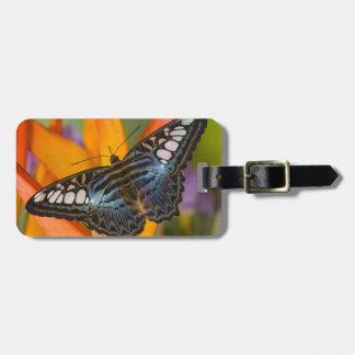 Sammamish, Washington Tropical Butterfly 24 Luggage Tag