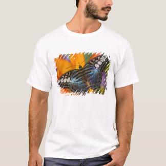 Sammamish, Washington Tropical Butterfly 24 T-Shirt