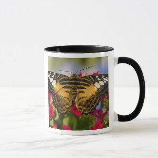 Sammamish, Washington Tropical Butterfly 26 Mug