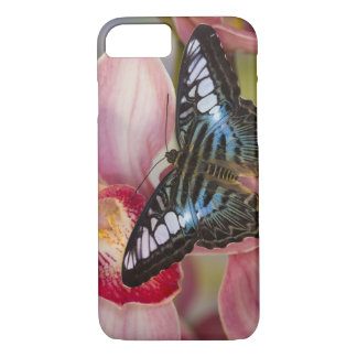 Sammamish, Washington Tropical Butterfly 2 iPhone 8/7 Case