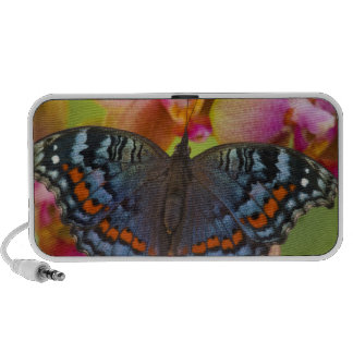 Sammamish Washington Tropical Butterfly 2 Travelling Speaker
