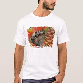 Sammamish, Washington Tropical Butterfly 2 T-Shirt