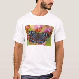 Sammamish Washington Tropical Butterfly 2 T-Shirt