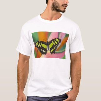 Sammamish, Washington Tropical Butterfly 32 T-Shirt