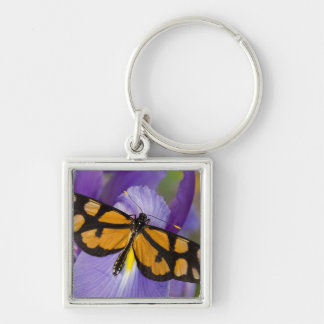 Sammamish, Washington Tropical Butterfly 34 Key Ring