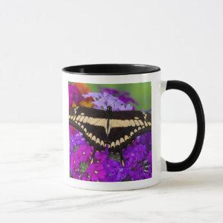 Sammamish, Washington Tropical Butterfly 36 Mug