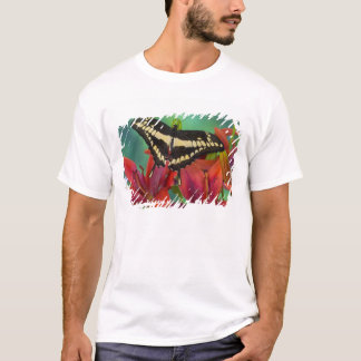Sammamish, Washington Tropical Butterfly 37 T-Shirt