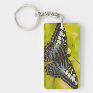 Sammamish, Washington Tropical Butterfly 38 Key Ring