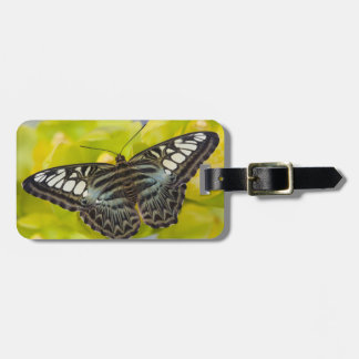 Sammamish, Washington Tropical Butterfly 38 Luggage Tag