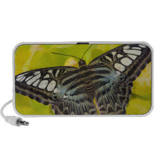 Sammamish, Washington Tropical Butterfly 38 Mp3 Speakers