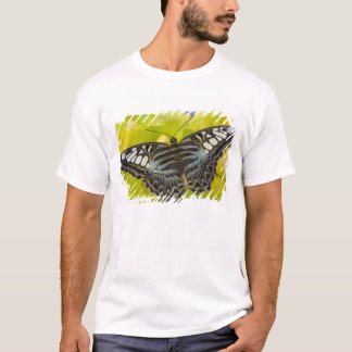 Sammamish, Washington Tropical Butterfly 38 T-Shirt
