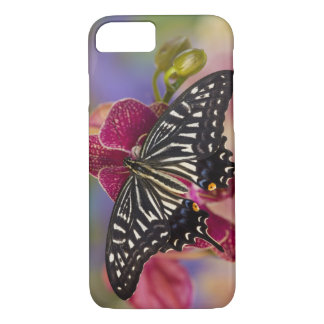 Sammamish, Washington Tropical Butterfly 3 iPhone 8/7 Case