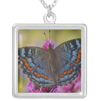 Sammamish Washington Tropical Butterfly 3 Square Pendant Necklace