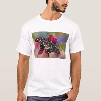 Sammamish, Washington Tropical Butterfly 3 T-Shirt