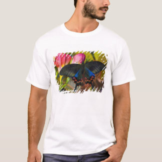 Sammamish, Washington Tropical Butterfly 40 T-Shirt