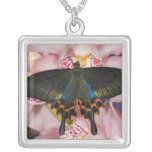 Sammamish, Washington Tropical Butterfly 41 Square Pendant Necklace