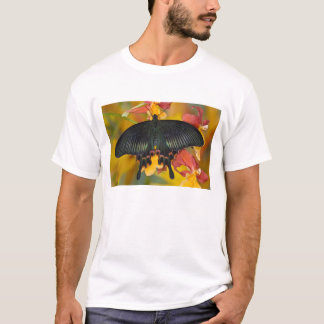 Sammamish, Washington Tropical Butterfly 42 T-Shirt