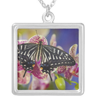 Sammamish, Washington Tropical Butterfly 43 Silver Plated Necklace
