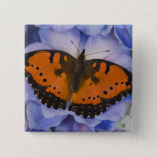Sammamish Washington Tropical Butterfly 4 15 Cm Square Badge