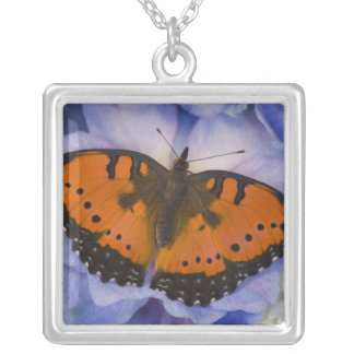 Sammamish Washington Tropical Butterfly 4 Silver Plated Necklace