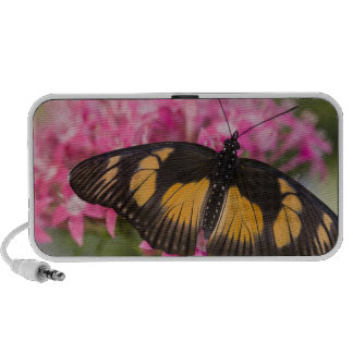 Sammamish, Washington Tropical Butterfly 4 iPod Speakers