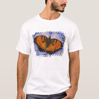 Sammamish Washington Tropical Butterfly 4 T-Shirt
