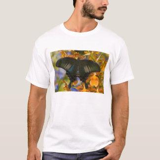 Sammamish, Washington Tropical Butterfly 5 T-Shirt
