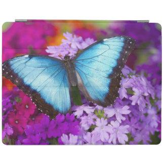 Sammamish Washington Tropical Butterfly 7 iPad Cover