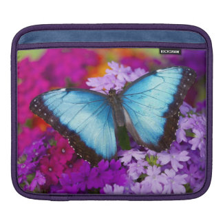 Sammamish Washington Tropical Butterfly 7 iPad Sleeve