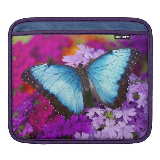 Sammamish Washington Tropical Butterfly 7 iPad Sleeve