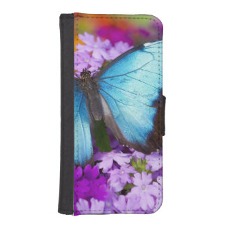 Sammamish Washington Tropical Butterfly 7 iPhone SE/5/5s Wallet Case