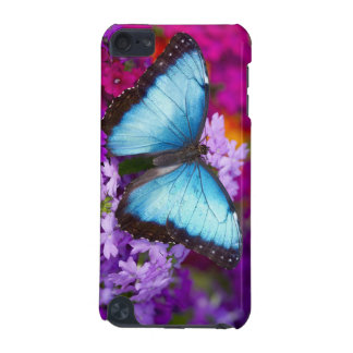 Sammamish Washington Tropical Butterfly 7 iPod Touch (5th Generation) Covers