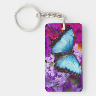Sammamish Washington Tropical Butterfly 7 Key Ring