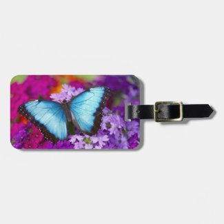 Sammamish Washington Tropical Butterfly 7 Luggage Tag
