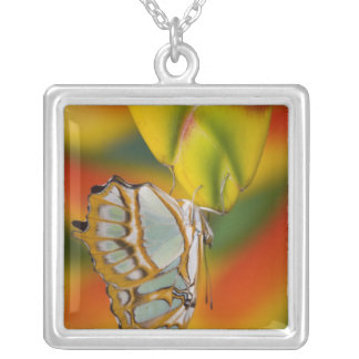 Sammamish, Washington Tropical Butterfly 7 Silver Plated Necklace