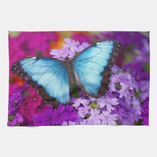 Sammamish Washington Tropical Butterfly 7 Tea Towel
