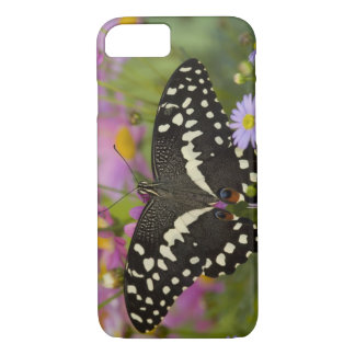 Sammamish, Washington Tropical Butterfly 8 iPhone 8/7 Case