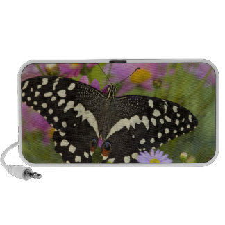 Sammamish, Washington Tropical Butterfly 8 Portable Speakers