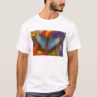 Sammamish Washington Tropical Butterfly 9 T-Shirt