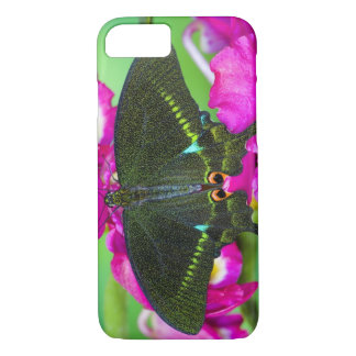 Sammamish, Washington Tropical Butterfly iPhone 8/7 Case